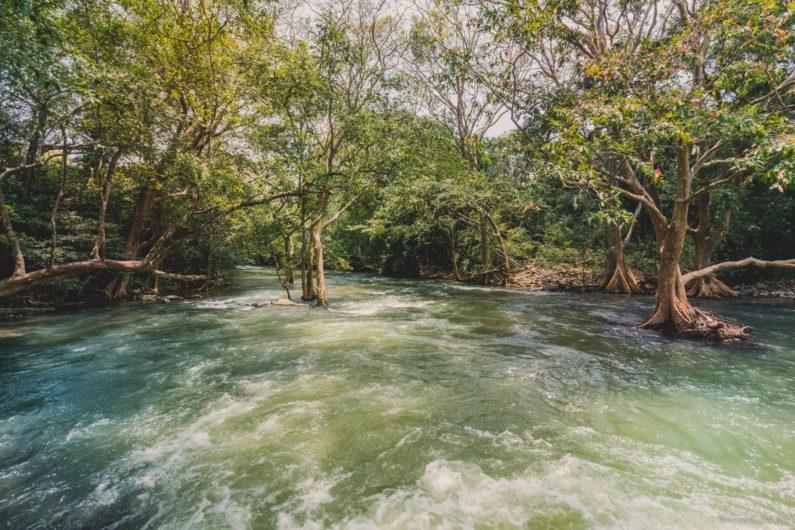 Река рядом с Полоннарувой